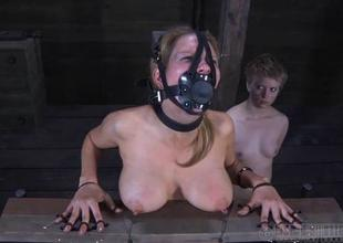 Charming babes nipples gets painful torturing